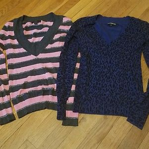 Express womens sweaters